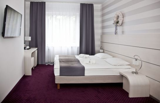 Single room (superior) Lavender Hotel Poznań