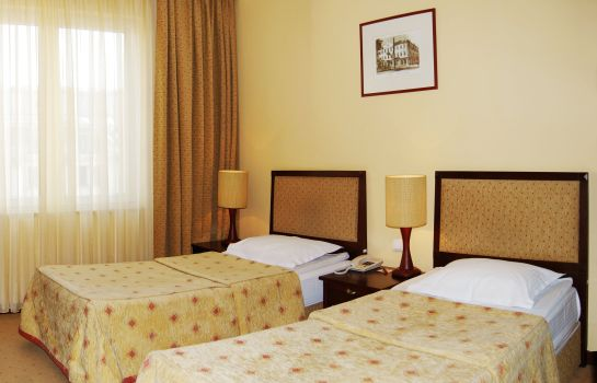 Double room (standard) Minsk Минск