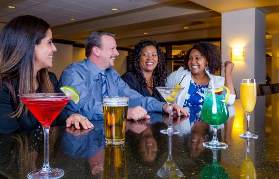 Hotel-Bar DoubleTree by Hilton Las Vegas Airport