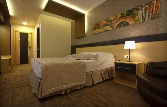 Double room (standard) Berksoy