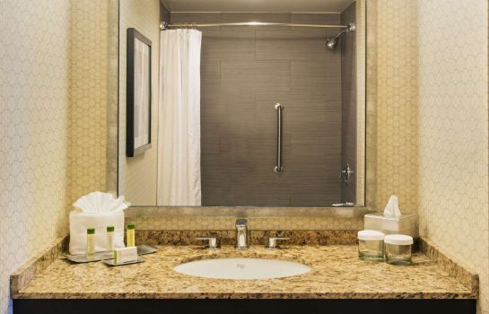 Room DoubleTree Suites by Hilton Austin