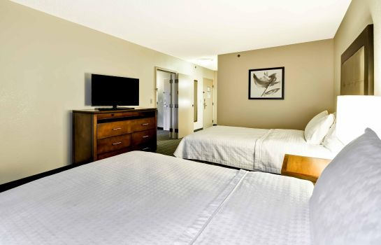 Suite Homewood Suites by Hilton Atlanta - Buckhead