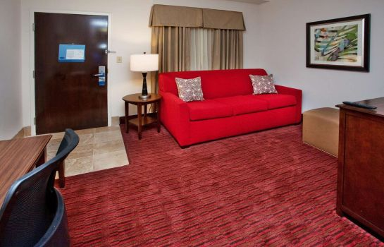 Suite Hampton Inn - Suites Atlanta-Downtown