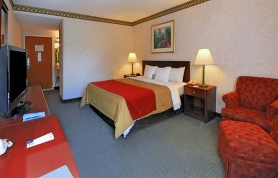 Zimmer Comfort Inn Boston