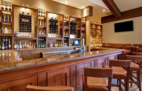 Hotel bar DoubleTree Fallsview Resort - Spa by Hilton - Niagara Falls