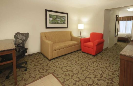 Suite Hilton Garden Inn Fort Worth-Fossil Creek