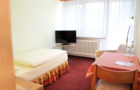 Single room (standard) Goldener Schwan garni