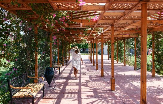 Hotel Desert Rose Resort In Hurghada Hotel De