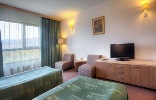Single room (standard) Vitosha Park