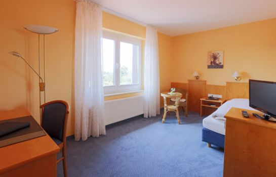 Single room (standard) Wille