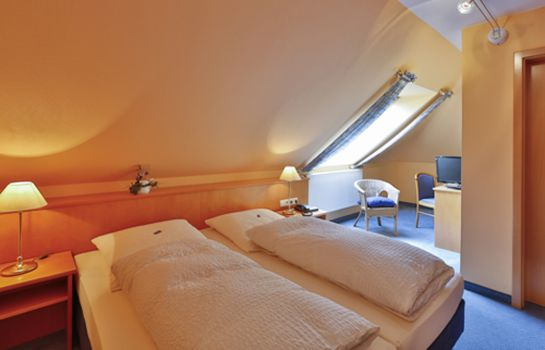 Double room (standard) Wille