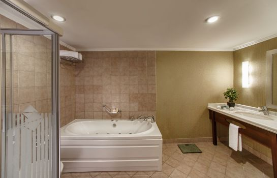 Bathroom Kaya İstanbul Fair&Convention (ex Ramada)
