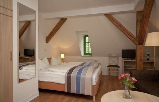 Double room (standard) Altes Gutshaus