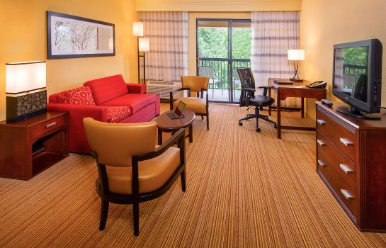 Suite Courtyard North Charleston Airport/Coliseum