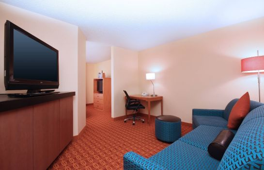 Suite Fairfield Inn & Suites Dallas Las Colinas