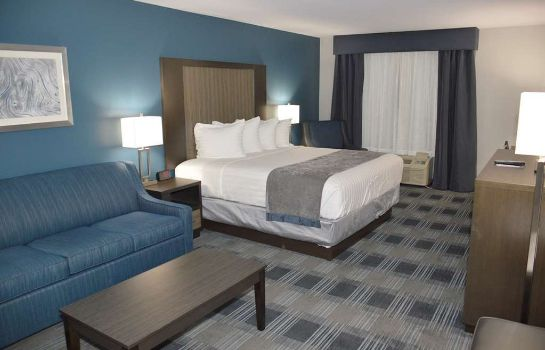 Zimmer BEST WESTERN TOWN CENTER INN