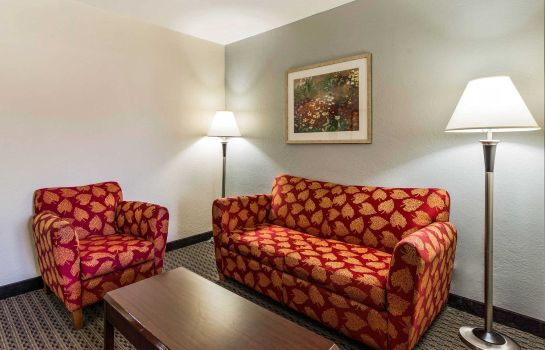 Suite PALMETTO HOTEL SPARTANBURG
