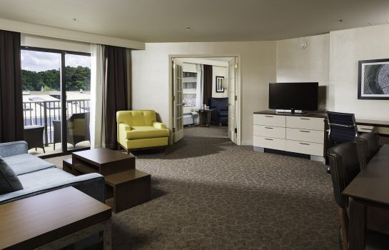 Suite DoubleTree by Hilton Williamsburg