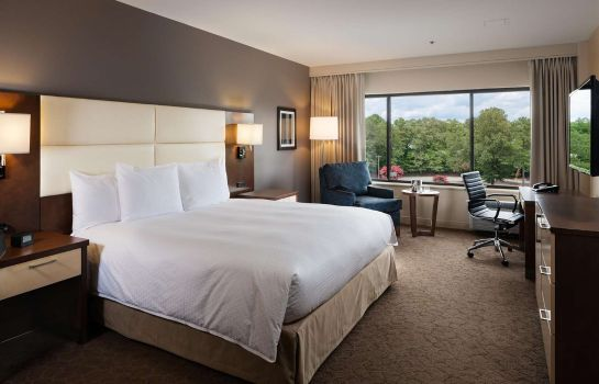 Zimmer DoubleTree by Hilton Williamsburg