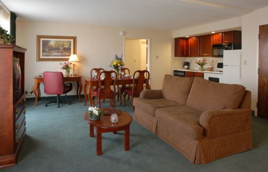Suite Residence Inn Minneapolis Edina