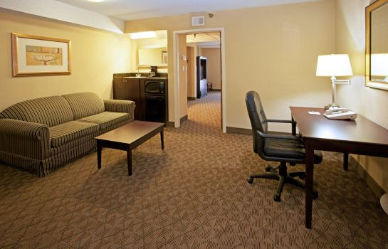 Zimmer Holiday Inn & Suites BEAUMONT-PLAZA (I-10 & WALDEN)