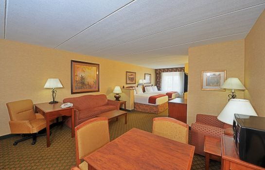 Zimmer Holiday Inn Express & Suites TEMPE