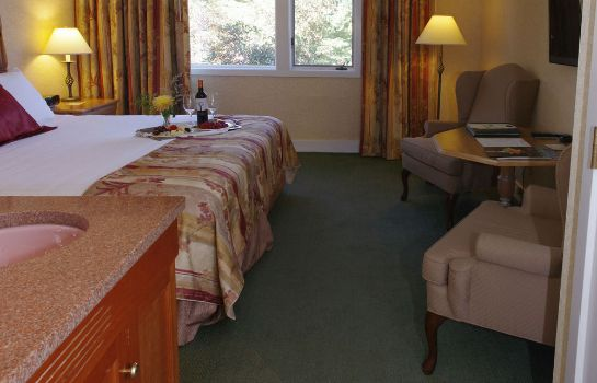 Chambre individuelle (confort) Stoweflake Mountain Resort & Spa