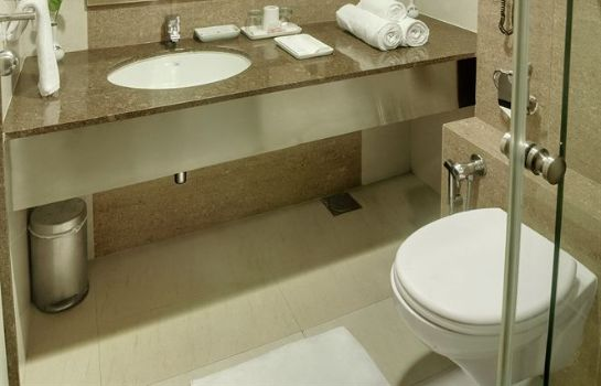 Bagno in camera Hotel Ambassador - A Boutique Hotel