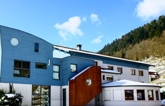 Picture Hotel Les Sapins