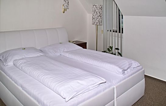 Double room (standard) Radnice