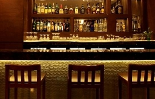 Hotel bar The Metropolitan Hotel and Spa New Delhi