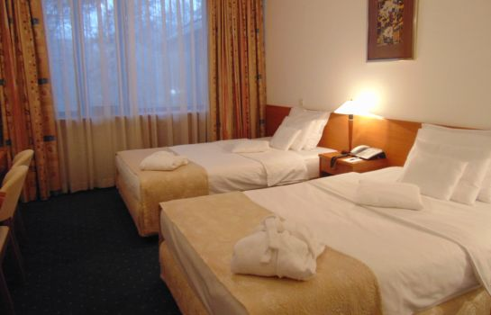 Double room (standard) Hotel  M