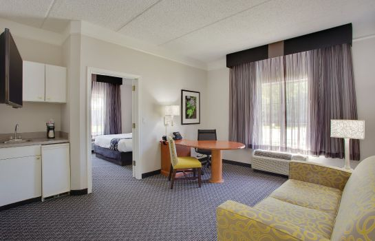 Suite La Quinta Inn Ste Houston W Park 10