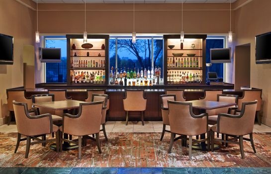 Hotel-Bar Sheraton Suites Chicago Elk Grove