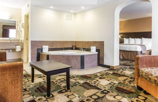Suite Quality Inn & Suites Coliseum