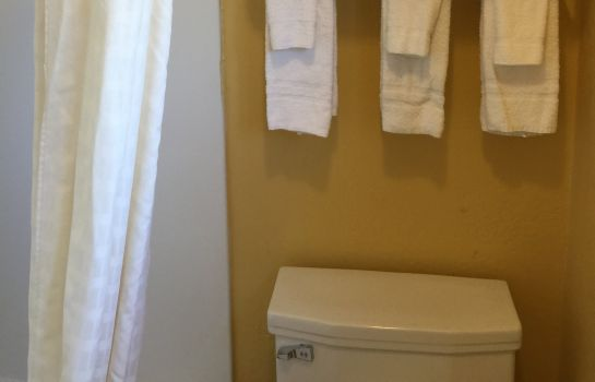 Chambre individuelle (standard) University Manor Inn Amherst