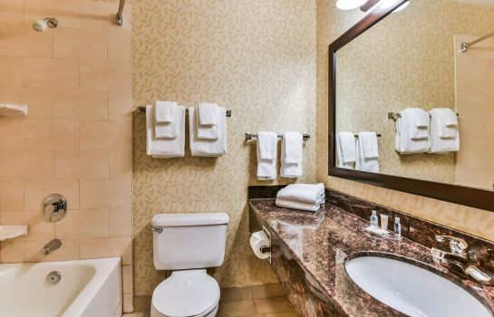 Suite Comfort Inn and Suites Ambassador Bridge
