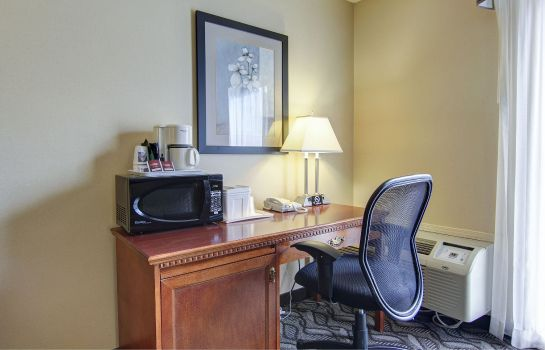 Chambre Comfort Inn and Suites Ambassador Bridge