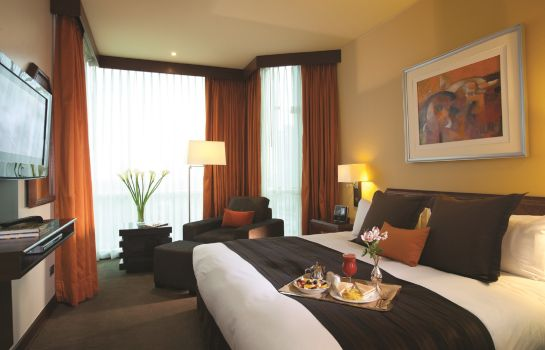 Double room (standard) Delfines Hotel & Convention Center