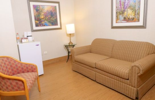 Suite Holiday Inn Express SILAO-AEROPUERTO BAJIO