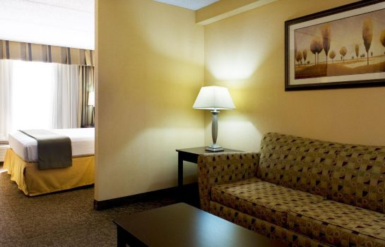 Suite Holiday Inn Express & Suites DALLAS FT. WORTH AIRPORT SOUTH