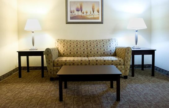 Info Holiday Inn Express & Suites DALLAS FT. WORTH AIRPORT SOUTH