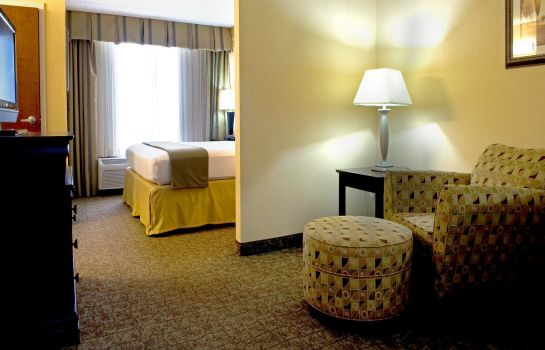 Zimmer Holiday Inn Express & Suites DALLAS FT. WORTH AIRPORT SOUTH