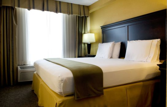 Kamers Holiday Inn Express & Suites DALLAS FT. WORTH AIRPORT SOUTH