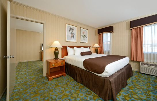 Zimmer Best Western Plus Executive Suites