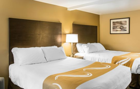 Chambre Quality Inn & Suites near Carnegie Museum