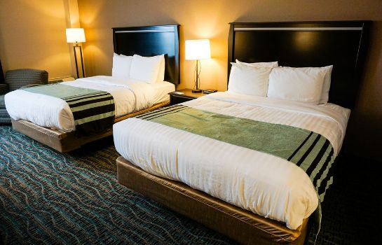 Standard room Boarders Inn & Suites and Conference Center