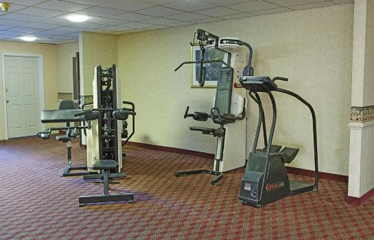 Obiekty sportowe Americas Best Value Inn Airport