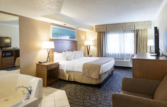 Zimmer Clarion Hotel Detroit Metro Airport