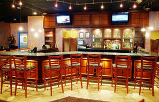 Hotel-Bar Holiday Inn COLUMBUS N - I-270 WORTHINGTON